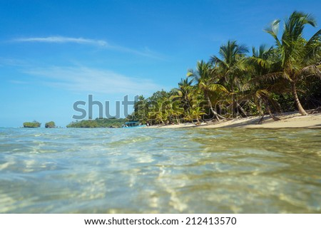 Caribbean beach with coconut trees viewed from the sea surface, Panama, Central America