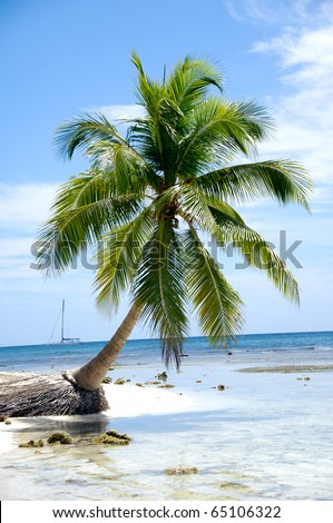 Caribbean beach with palm and white sand with the coast in the background