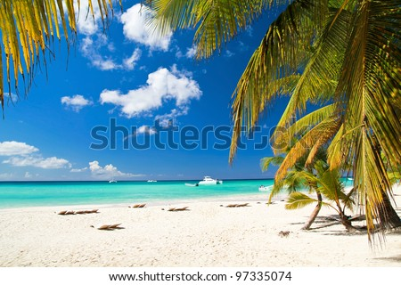 Caribbean beach with palms, paradise island - stock photo