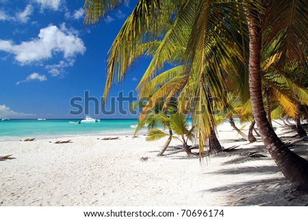 Caribbean beach with white sand - stock photo