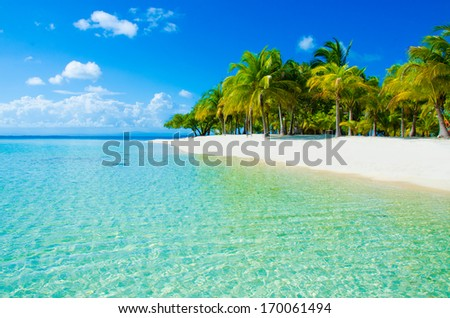 Caribbean Island - stock photo