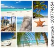 Caribbean nature collage with  tropical landscape - stock photo