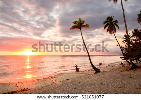 Caribbean Sea At Sunset With White Beaches And Coconut Palms