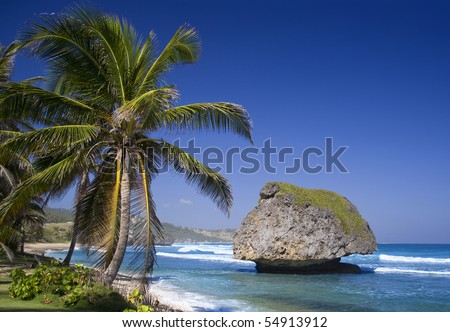 Caribbean sea. Barbados. Huge stones in the sea and a beach. - stock photo