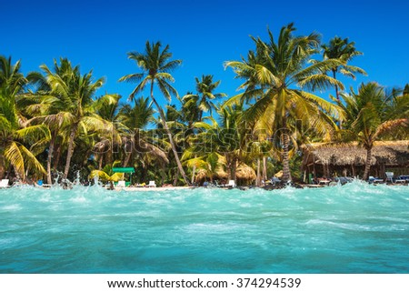 caribbean wild beach punta cana stock photo edit now 374294539