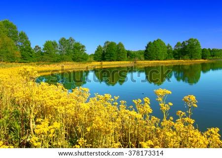 Carlyle Lake at Eldon Hazlet State Park Illinois - stock photo