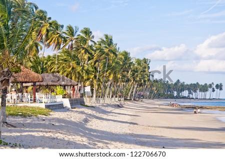 Carneiros beach - Pernambuco - Brazil - stock photo
