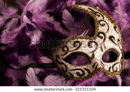 carnival mask on light and dark purpe feathers - stock photo
