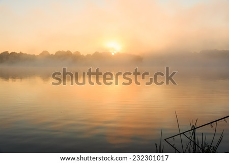 Carp fishing on a misty lake at sunrise in the center of France.