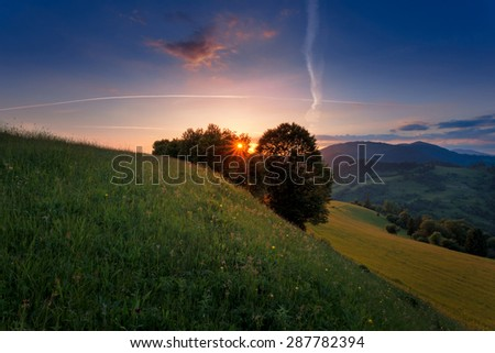 Carpathian mountain meadow in the sunset rays. - stock photo