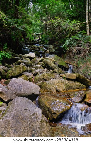Carpathian mountain stream flowing over rocks in forest - stock photo