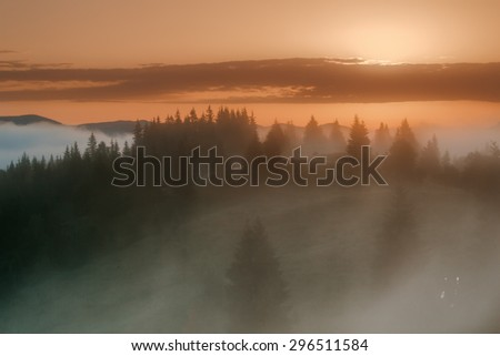 Carpathian Mountains. Foggy sunrise over the edge of the forest - stock photo