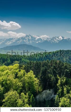 Carpathian Mountains Scenery - stock photo
