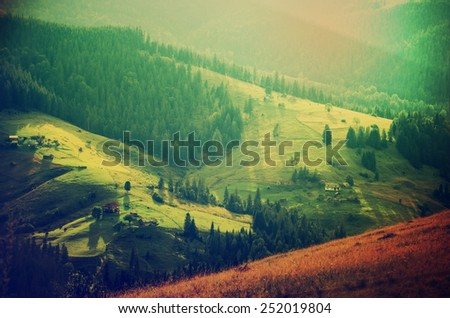 Carpathian mountains summer  landscape at sunset with green sunny  hills, amazing vintage retro hipster background - stock photo