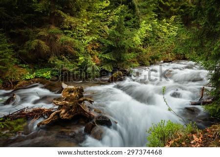 Carpathian Mountains. The mountain river near the waterfall Shipot - stock photo
