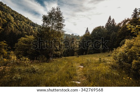 Carpathian's, Ukraine - stock photo