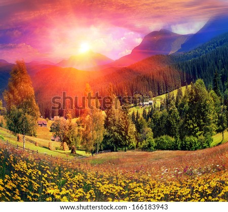 Carpathian Summer is the warmest and beautiful time of year, the abundance of flowers, clear lakes, lush alpine meadows of grass, fresh air attract people from cities Arnica, or Baranez.