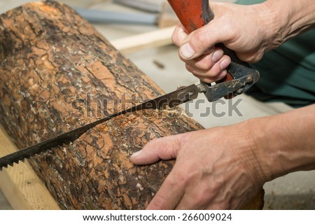 Carpenter saws off with a hacksaw the wood piece for birdhouse - stock photo