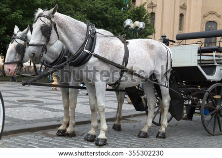carriage with horses at the Old Town Square. Prague
