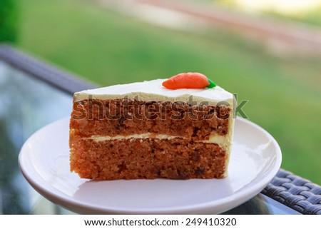 carrot cake on white dish - stock photo
