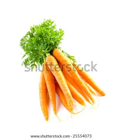 Carrot fresh vegetable group on white background - stock photo