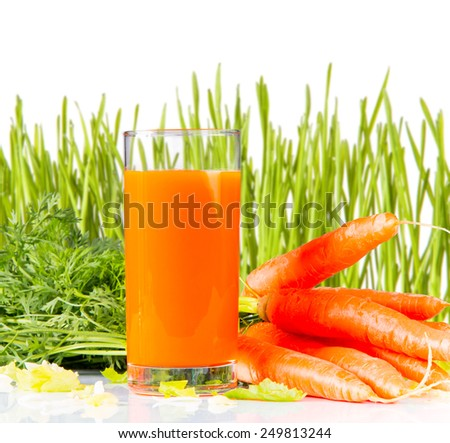 carrot juice and carrot segments with  fresh green grass isolated on white background