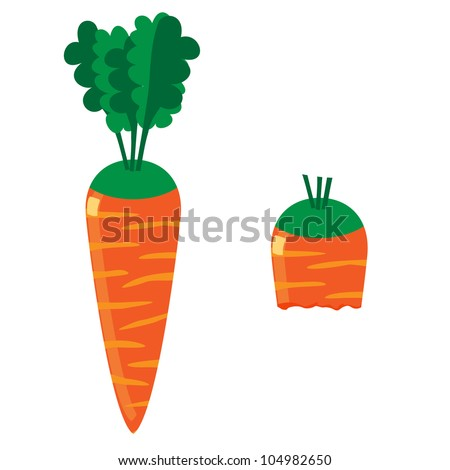 Carrot on the white background - stock photo