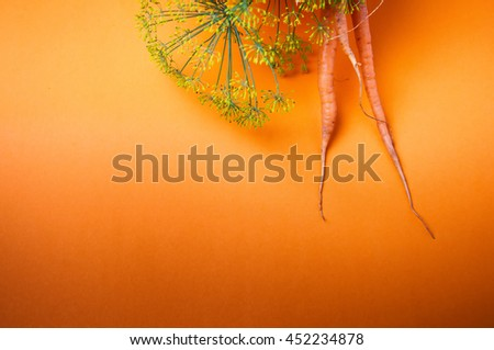 Carrots and fennel on orange background