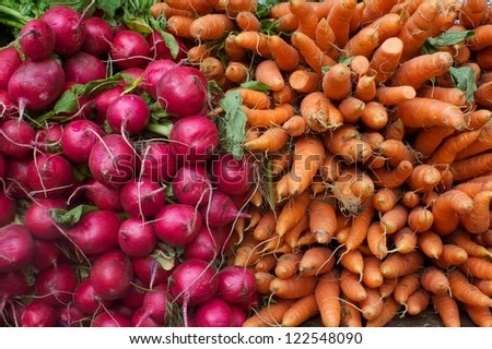 carrots and radishes textures - stock photo