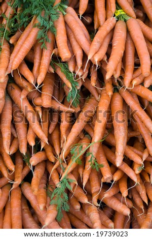 Carrots at farmers market - stock photo