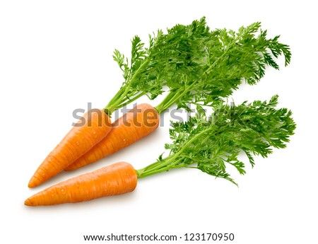 Carrots Isolated on a white background - stock photo