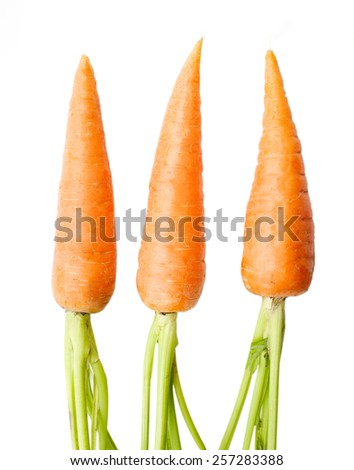 carrots on a white background - stock photo