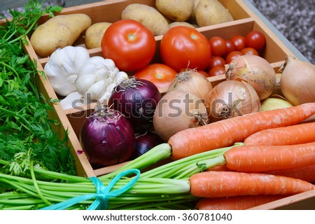 Carrots,onion,red onion,garlic,tomatoes,potatoes. a lot of colorful vegetable in the kitchen.