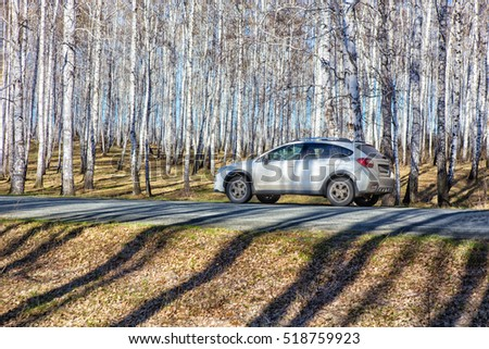 cars traveling on highway in birch forest in spring