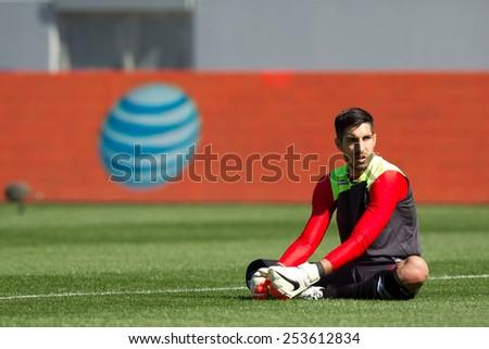 CARSON, CA. - FEB 2 : Panama goalkeeper Jaime Penedo during the USA friendly against Panama on February 2nd 2015 at the StubHub Center in Carson, California. - stock photo