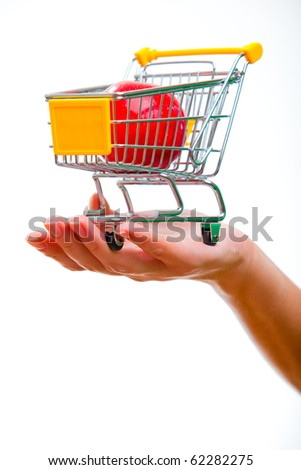 Cart from the supermarket is on the female hand.
