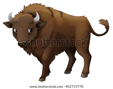 Bison American Bison E...