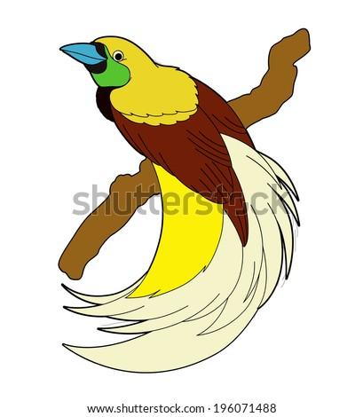 Bird of paradise animal drawing - photo#26