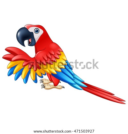 Cartoon funny macaw isolated on white background