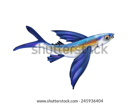 flying fish stock images royaltyfree images amp vectors
