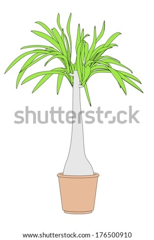 cartoon image of plant in pot