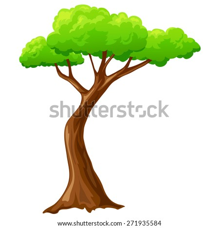 Cartoon isolated tree on white background isolated on white - stock photo
