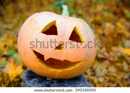 carved pumpkin for halloween