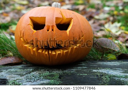 stock-photo-carved-pumpkin-sitting-on-a-
