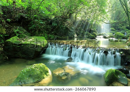 Cascade in a mysterious forest with sunlight shining through the lavish greenery ~ Beautiful river scenery of Taiwan in springtime - stock photo