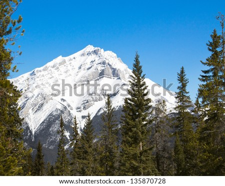 Cascade mountain with blue sky, framed by pine trees. Banff National Park, Canada - stock photo