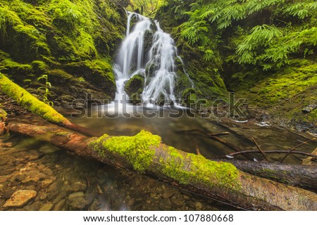 Cascade waterfall with a dead log - stock photo
