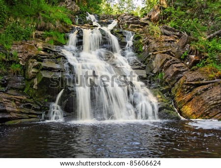 cascades of forest waterfall in summer day