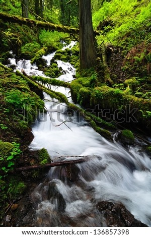 Cascading Creek - stock photo