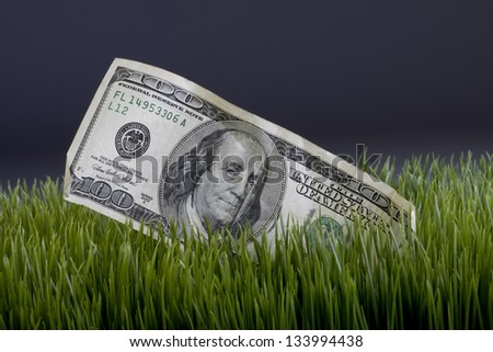 Cash in the Grass. - stock photo